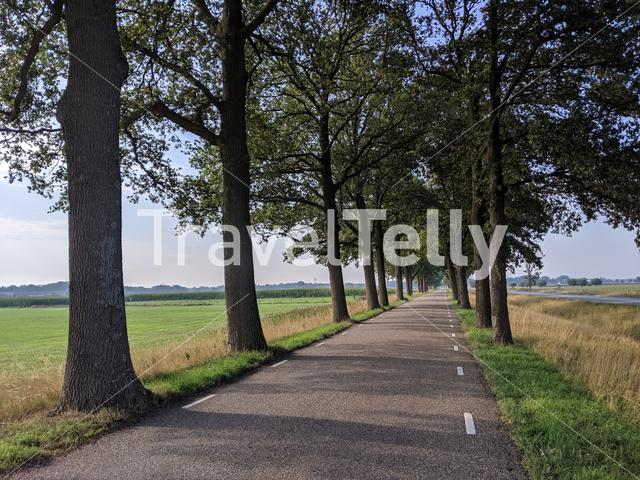 Road around Holten, The Netherlands
