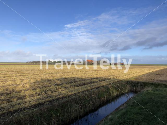 Farming landscape from Texel island in The Netherlands