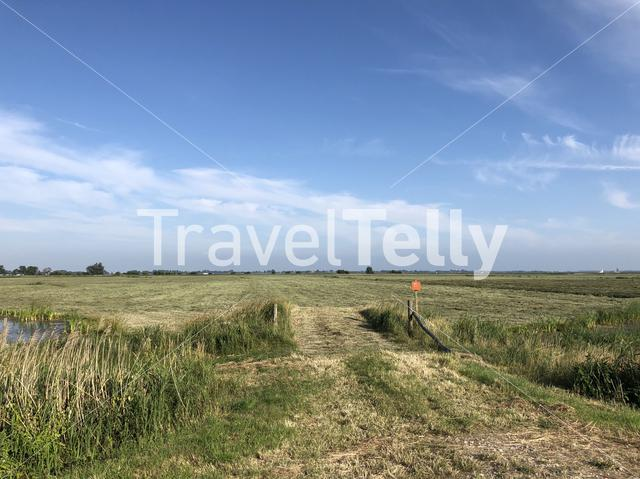 Farmland around the Sneeker lake in Friesland The Netherlands