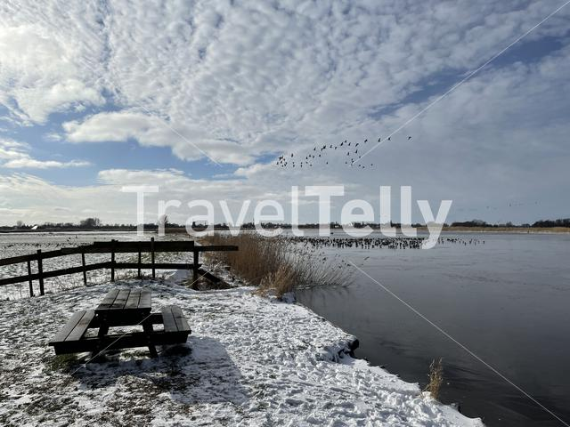 Bench in the snow and a frozen lake around Sneek , Friesland The Netherlands