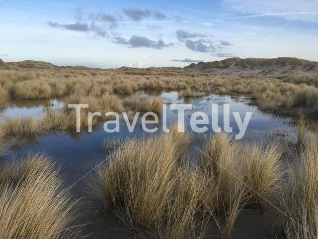 Sand dune lake around Oosterend Terschelling in Friesland The Netherlands