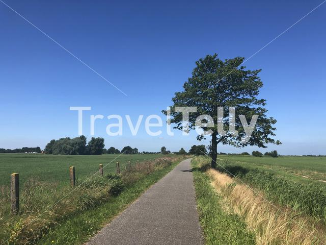 Landscape from around Oudwoude in Friesland The Netherlands