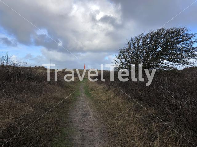 Path towards the lighthouse on Texel in The Netherlands