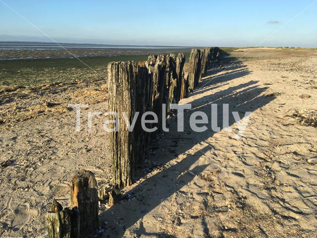 Wooden poles during low tide at the waddensea in Moddergat Friesland The Netherlands