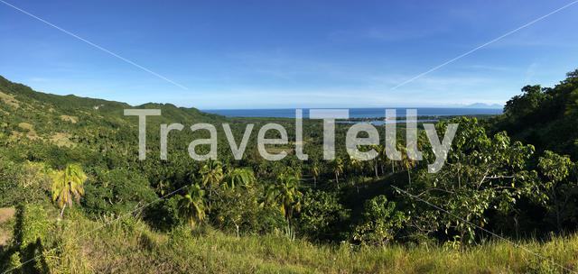 Look out towards the sea with Palmtrees panaorama in the hills of Anda Bohol the Philippines
