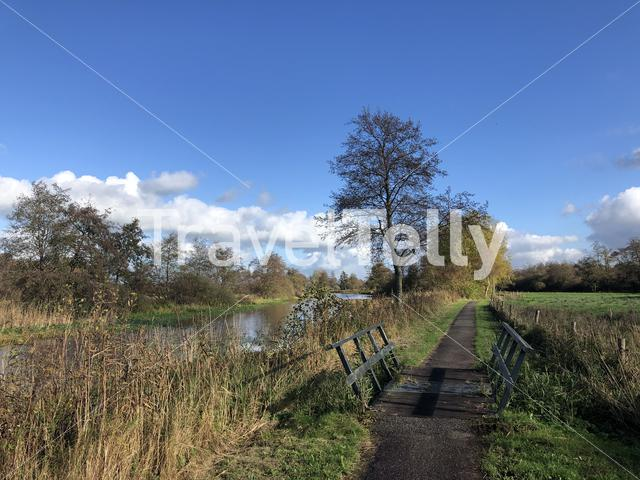 Bicycle path through a nature reserve around Wolvega in Friesland, The Netherlands