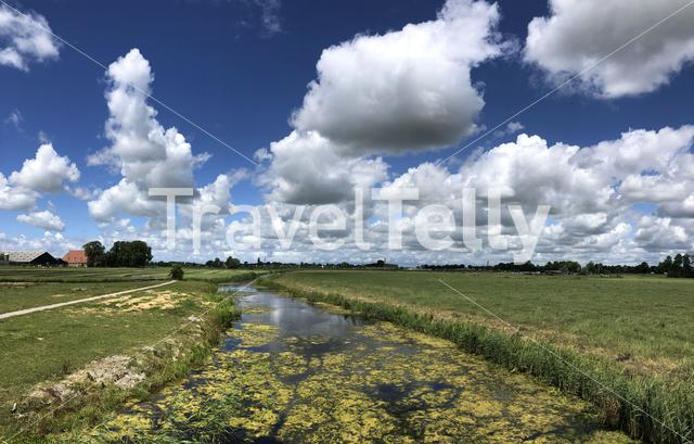 Canal and farmland around Boksum in Friesland The Netherlands