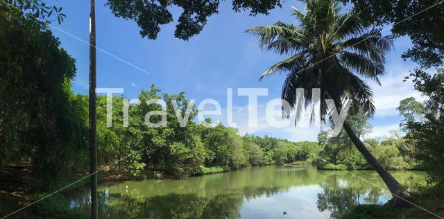 Panorama from Sri Nakhon Khuean Khan Park And Botanical Garden in Bangkok Thailand
