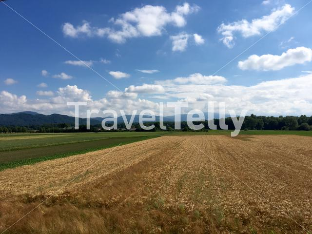 Countryside landscape in Slovenia