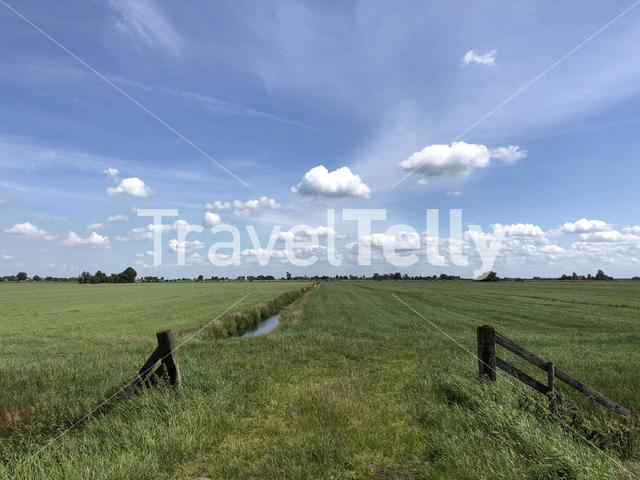 Farmland in Friesland The Netherlands