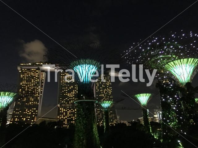 Supertree Grove light show at Gardens by the Bay in Singapore
