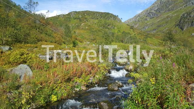 Stream at Moysalen National Park Norway