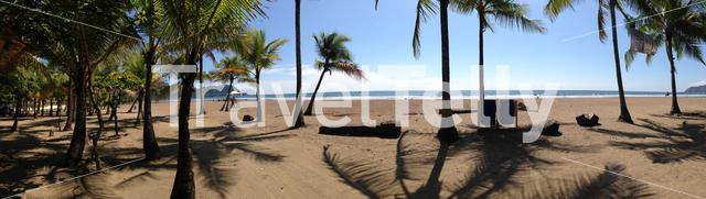Panorama of Jaco Beach with Palmtrees in Costa Rica