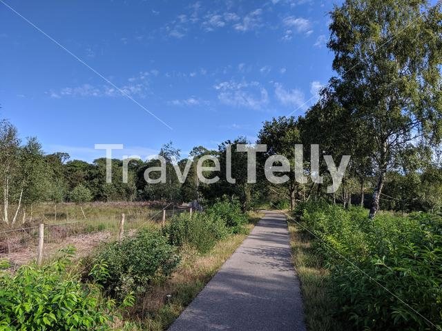 Nature reserve around Gees in Drenthe, The Netherlands