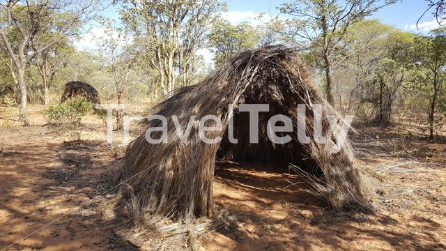 Grass hut from the Hoansi san tribe in Namibia