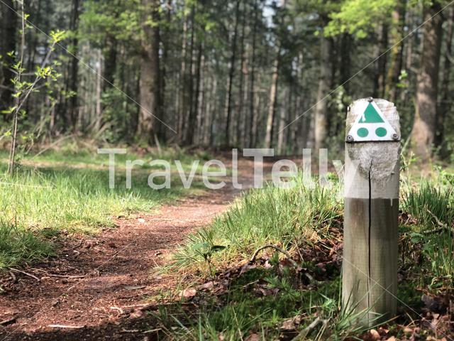 Hardenberg MTB route in The Netherlands