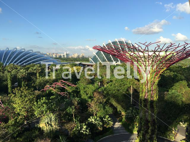 Flower dome and Cloud forest seen from Supertree Grove at the garden by the bay in Singapore