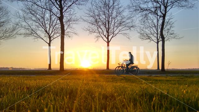Person on bike with sunset
