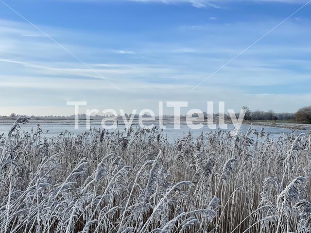 Winter landscape around the Sneekermeer a lake in Friesland The Netherlands