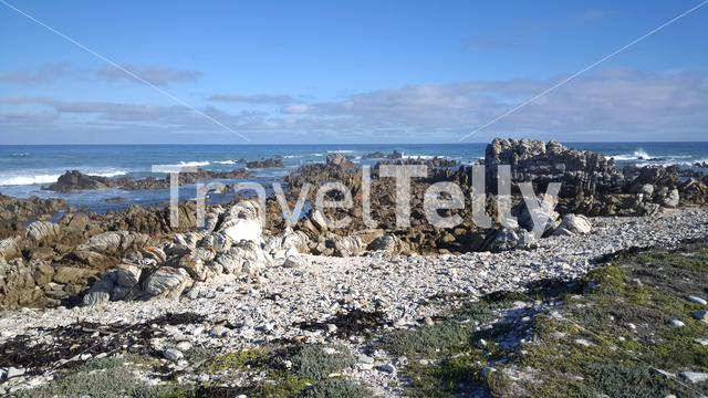 The rocky coast of Cape Agulhas in South Africa
