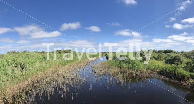 A river on Schiermonnikoog in Friesland, The Netherlands