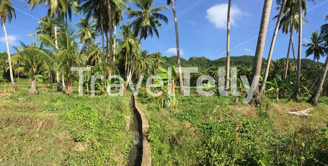 Panorama from a water irrigation at farm land in Anda Bohol the Philippines