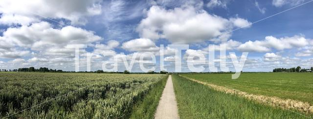 Walk and cycle path around Wirdum in Friesland The Netherlands