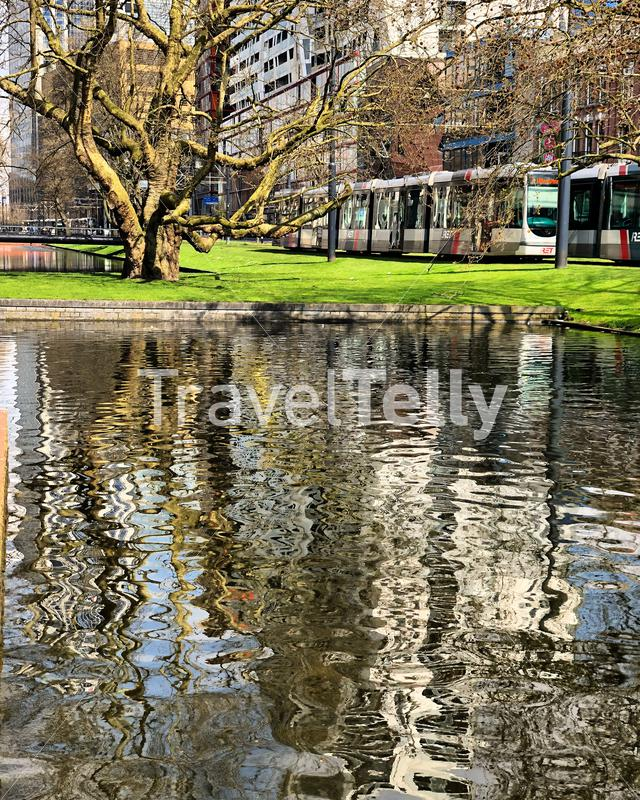 Rotterdam cityscape with tram and water. Tree and buildings reflection. Eyespiration mindfulness moment