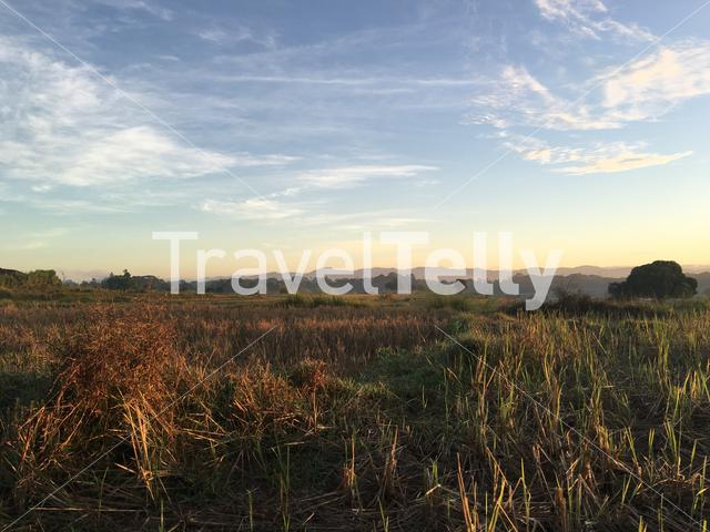 Morning at farmland in Angat, Bulacan, Philippines