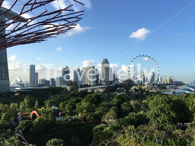 Marina Bay Sands and Singapore Flyer seen from Supertree Grove at the garden by the bay in Singapore
