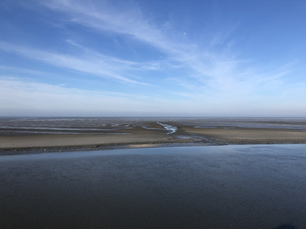 The Wadden Sea during low tide in Friesland The Netherlands