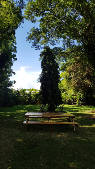 Picnic table at the garden in Town