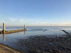 Low tide at the Wadden Sea in Friesland The Netherlands