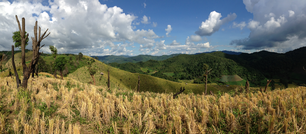 Panorama from the mountain landscape in the hills of Northern Thailand