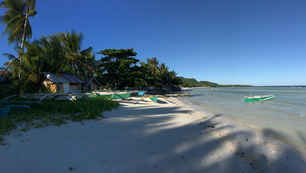 Catamaran Boats, palmtrees and a house at the beach in Anda Bohol the Philippines
