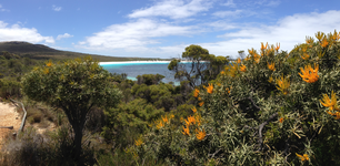 Lucky Bay panorama at Cape Le Grand National Park Australia