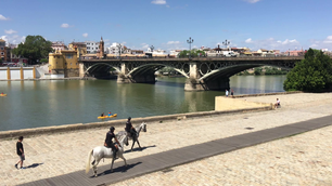 Police riding a horse along the canal de Alfonso XIII with the Puente de Isabel II Bridge in Seville Spain