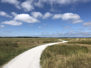 Bicycle path on Schiermonnikoog in Friesland, The Netherlands